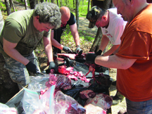 Hunters cutting up bear meat on site at Taxis River Outfitters