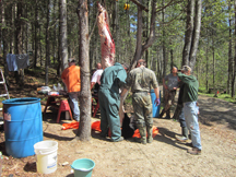 Guides skinning bears for hunters
