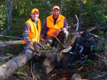 7 pt Bull Moose shot with bow
