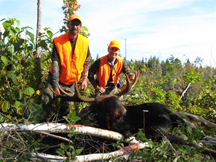 14 pt Bull Moose 48 inch Spread 930lbs