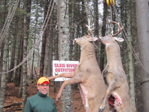 Two White Tail Deer on the gamble pole