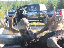 Canada in the Rough Bull Moose 2015 Hunt