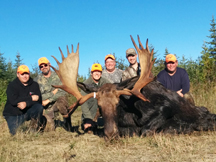 Hunting Party with 50 inch New Brunswick Moose