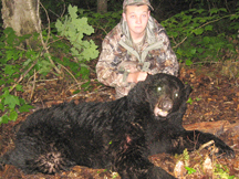 Sam tags this new brunswick black bear