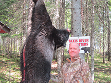 Sean's black bear hunt is successful at taxis river outfitters